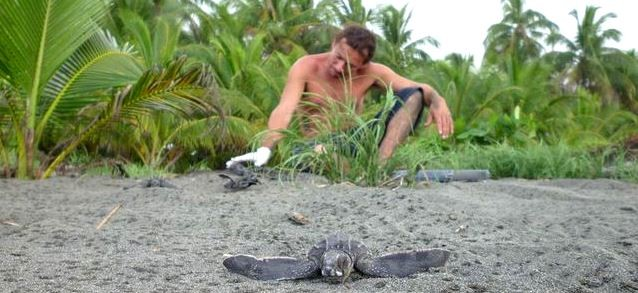 An ex-poacher witnesses leatherback hatchlings for the first time. Photograph: Carlyn Samuels